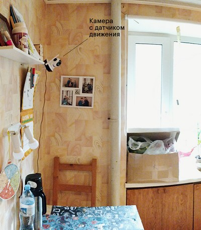 Умный Дом за 13 тысяч рублей